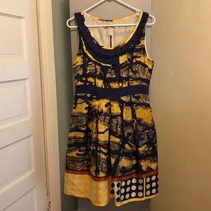 Anthropologie Baraschi Dress - Large